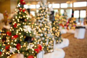 christmas trees 1042542 1280