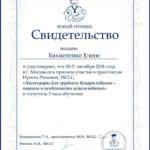 свидетельство практикум Ирины Рюховой (аксессуары для ГВ)