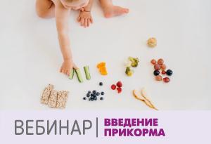 Вебинар: введение прикорма